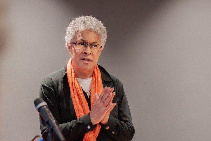 اقتصاد سیاسی سیاه / اپاتریشیا هیل کالینز